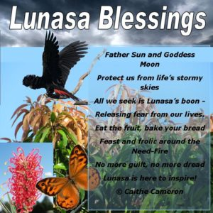 Lunasa Blessings